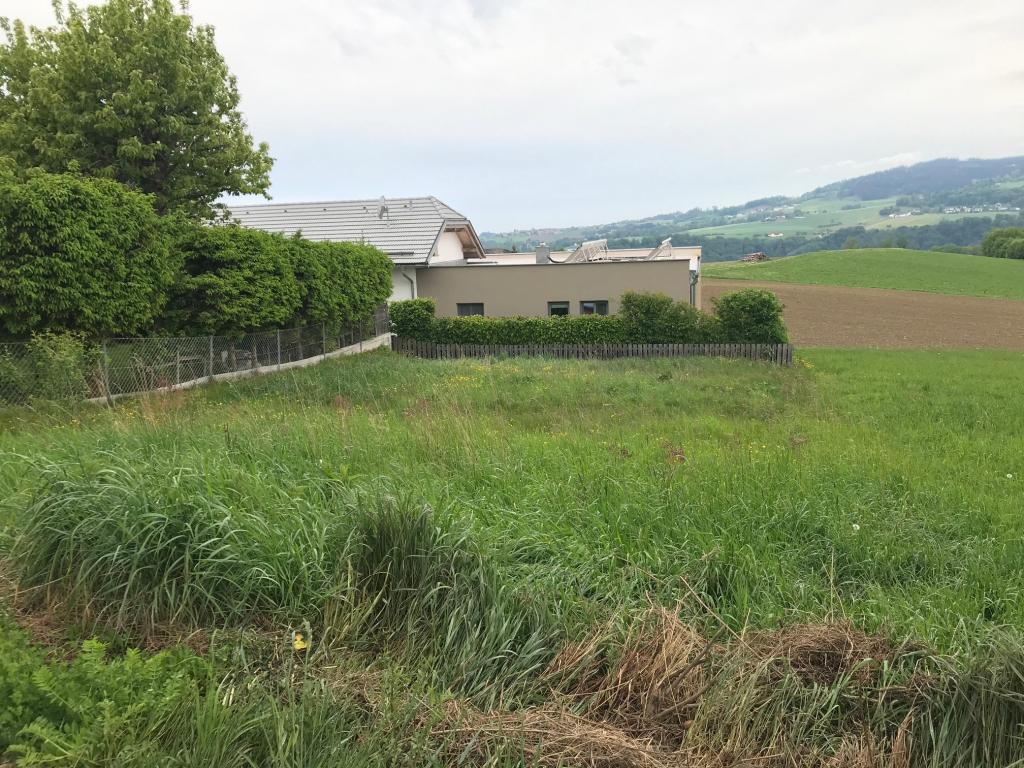 Kompaktes Grundstück in Altenberg 4203 Altenberg bei Linz, Wohnen